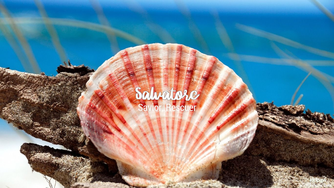 Salvatore beautiful wallper