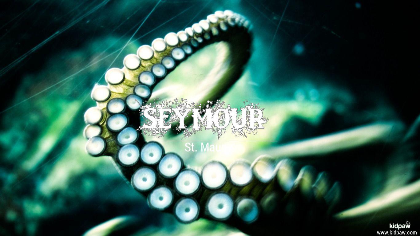 Seymour beautiful wallper