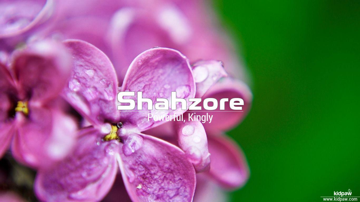Shahzore beautiful wallper