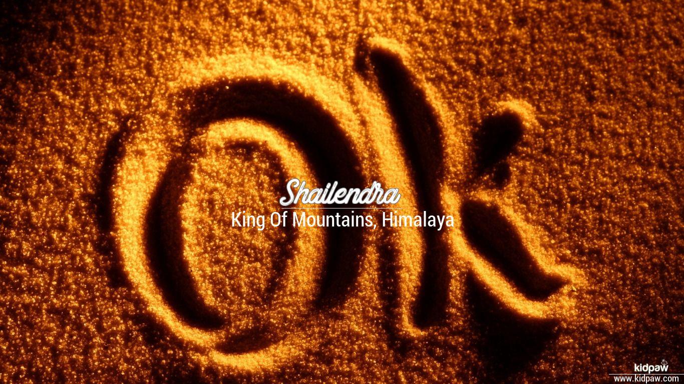 shailendra name