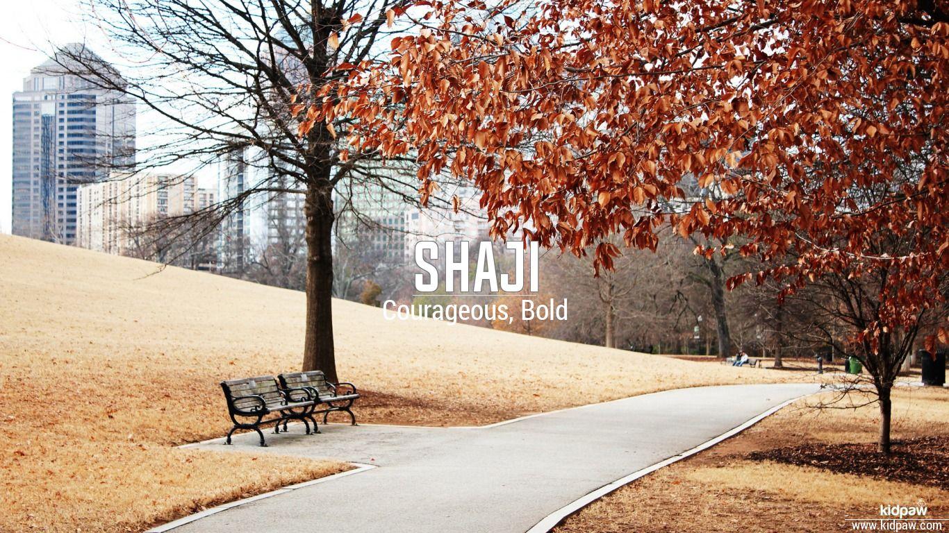 Shaji beautiful wallper