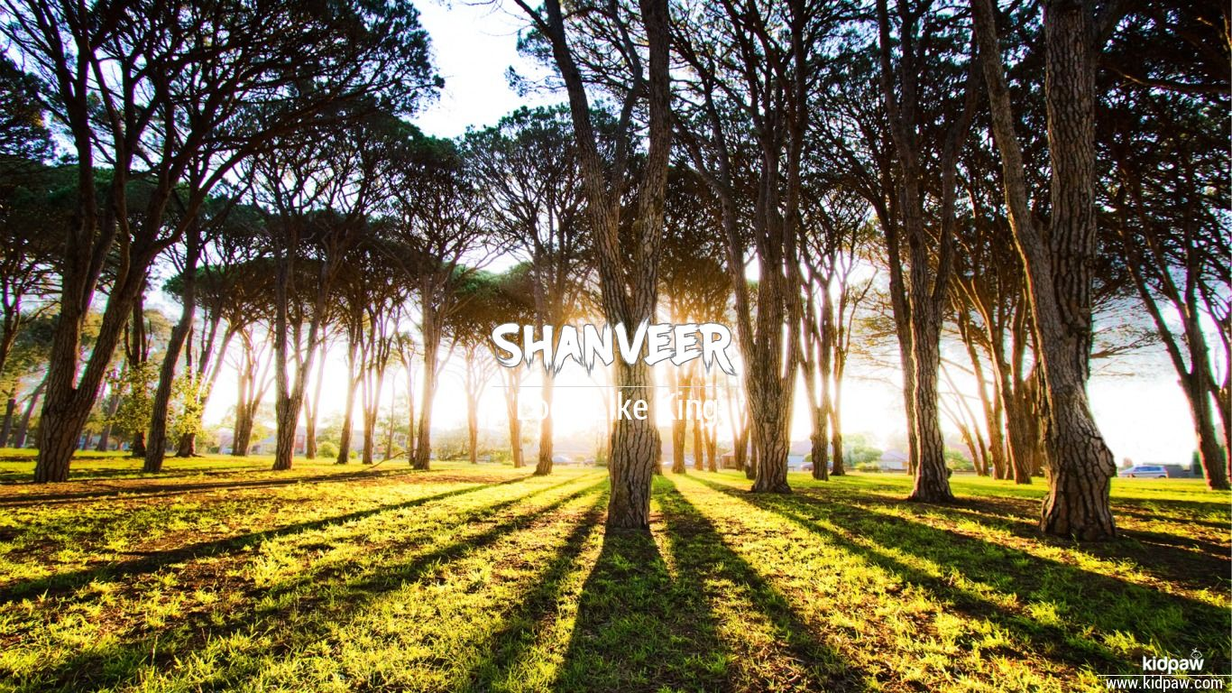 Shanveer beautiful wallper