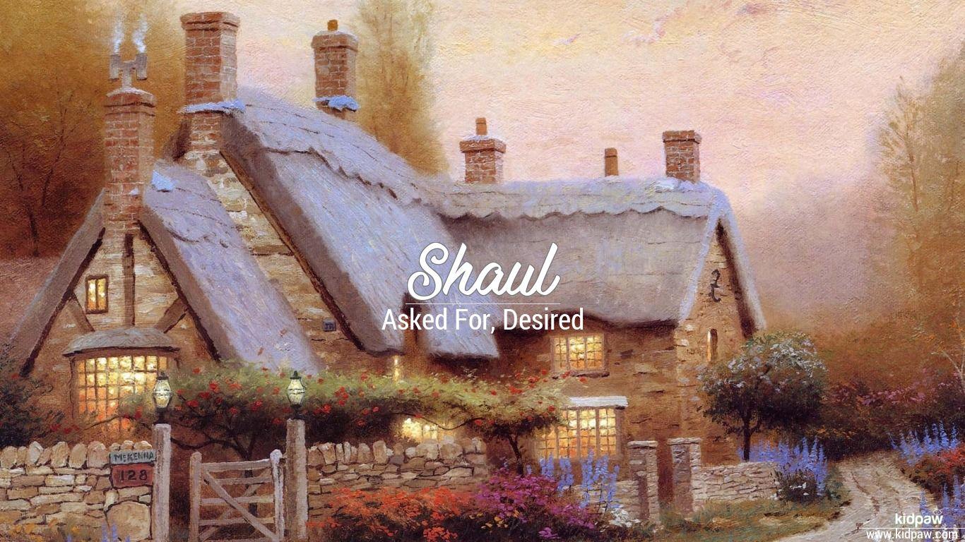 Shaul beautiful wallper