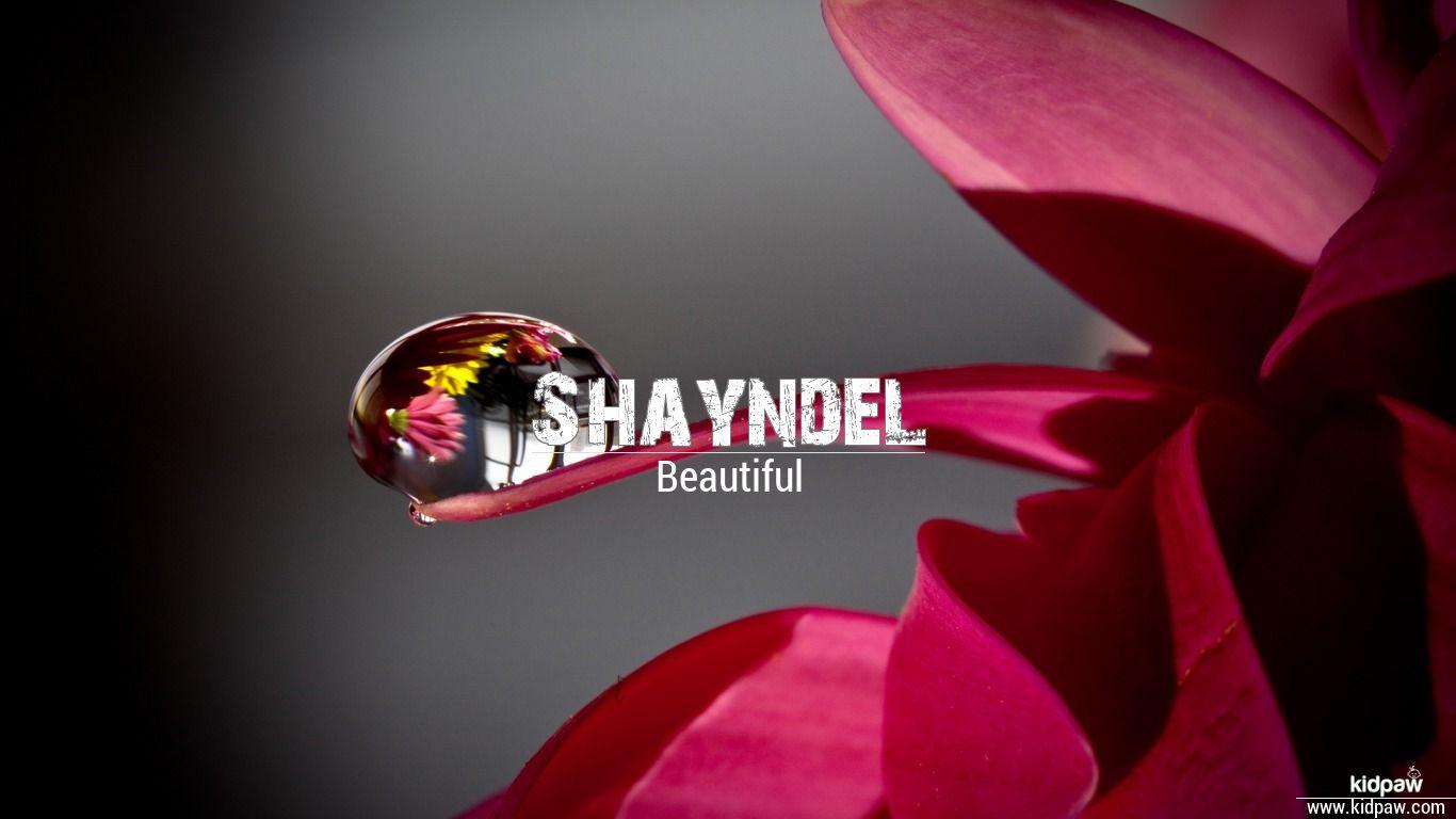 Shayndel beautiful wallper