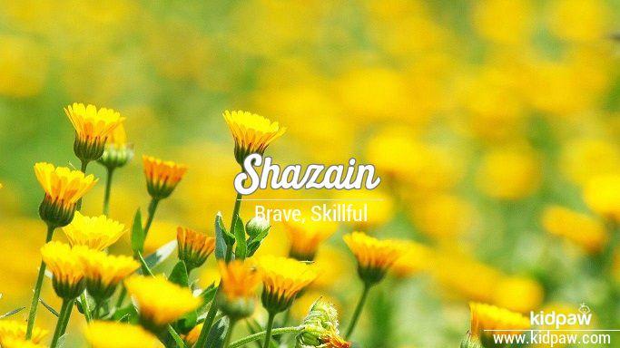 شازین Shazain Name Meaning In Urdu Arabic Names For Boys