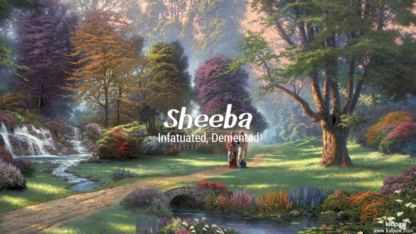 Sheeba beautiful wallper