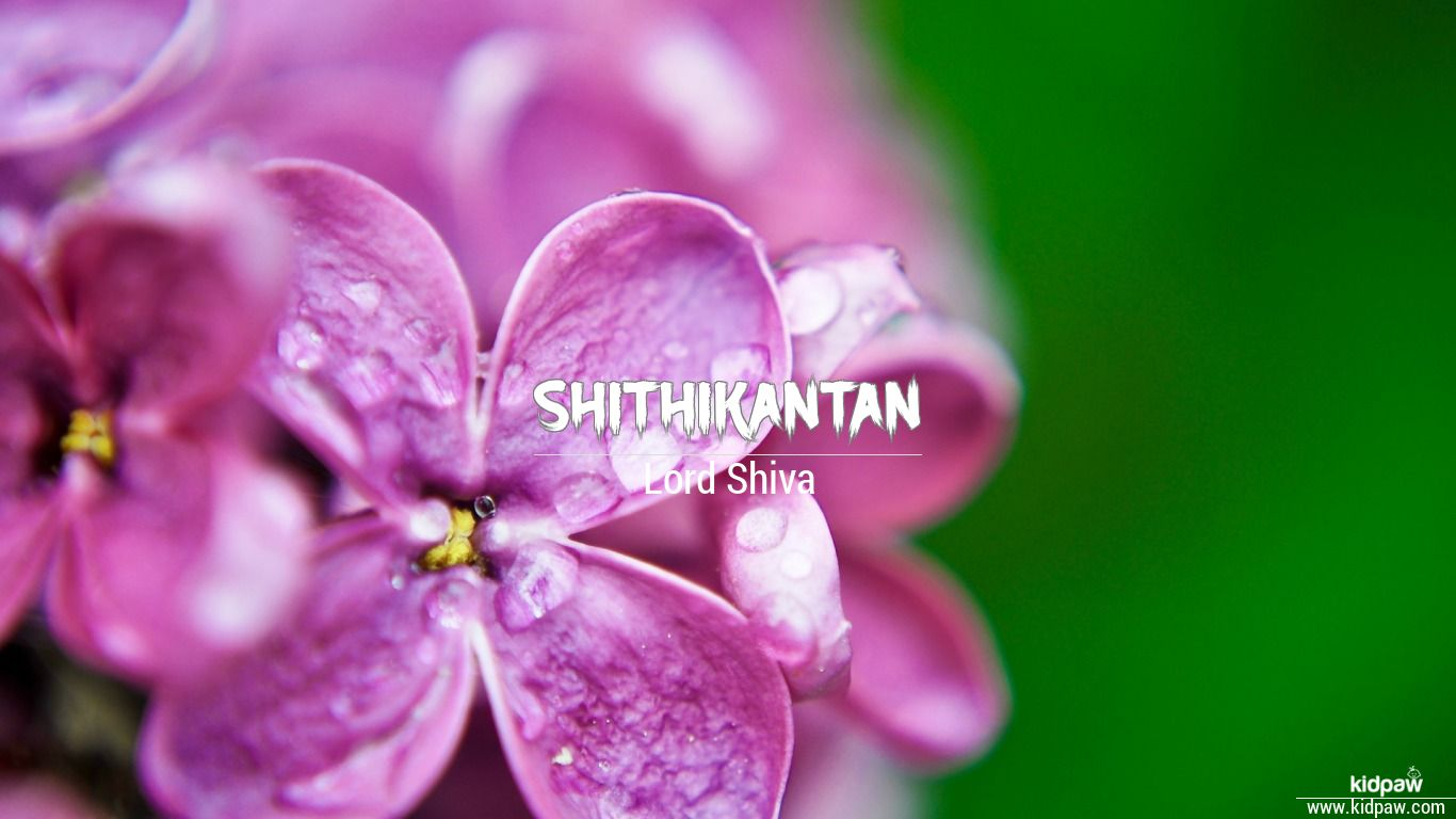 Shithikantan beautiful wallper