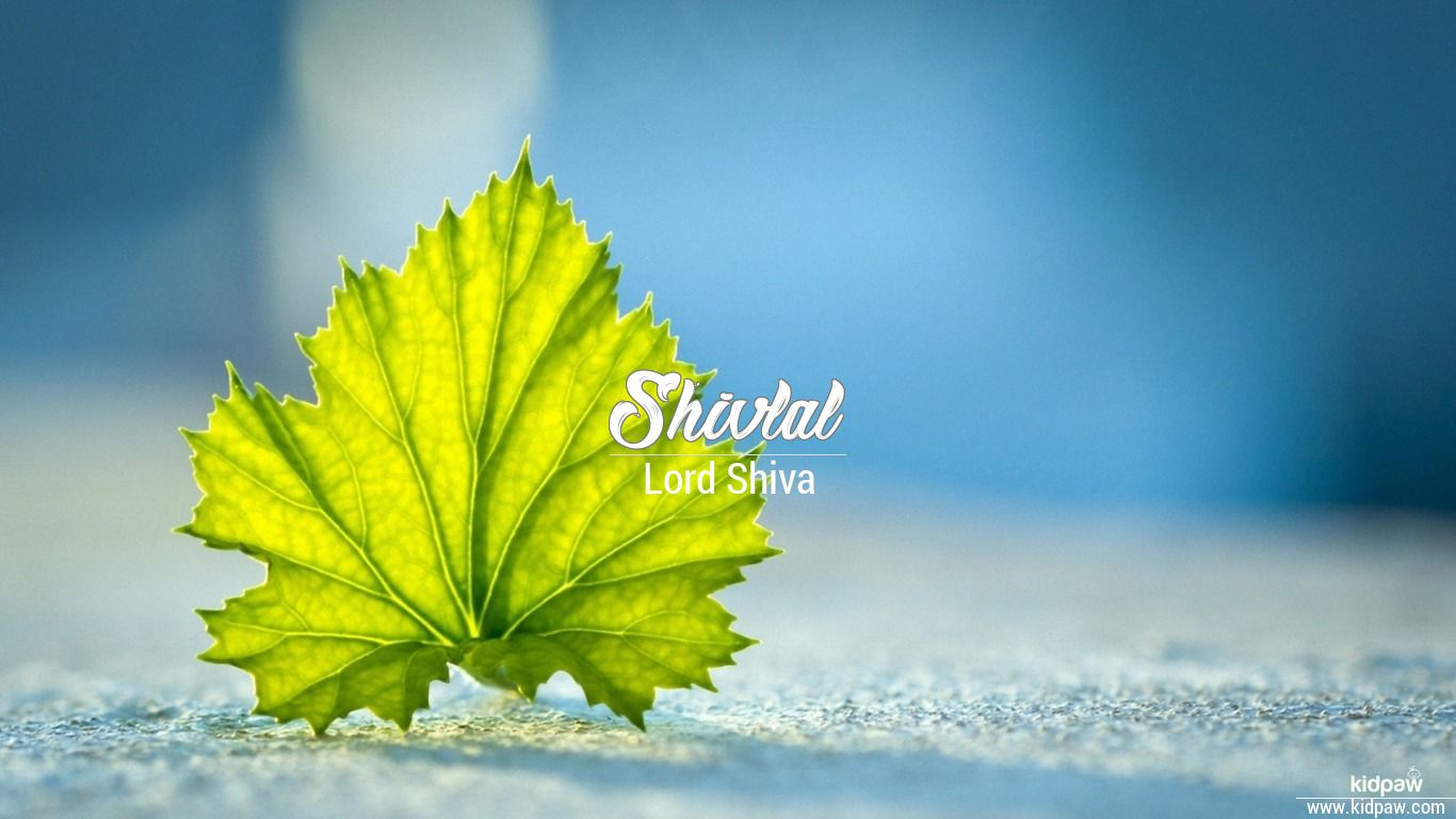 Shivlal beautiful wallper