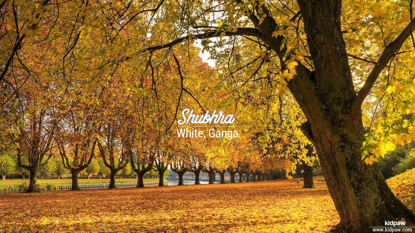 Shubhra beautiful wallper