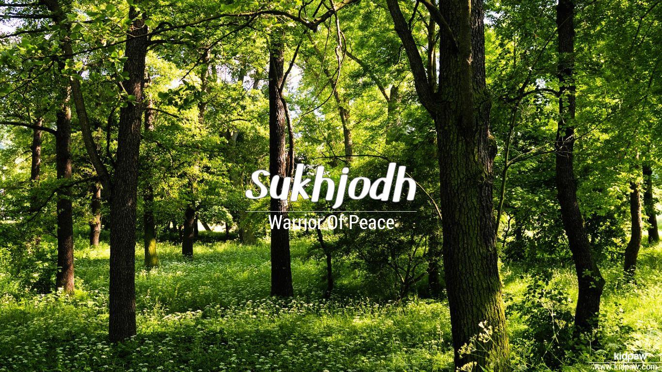 Sukhjodh beautiful wallper