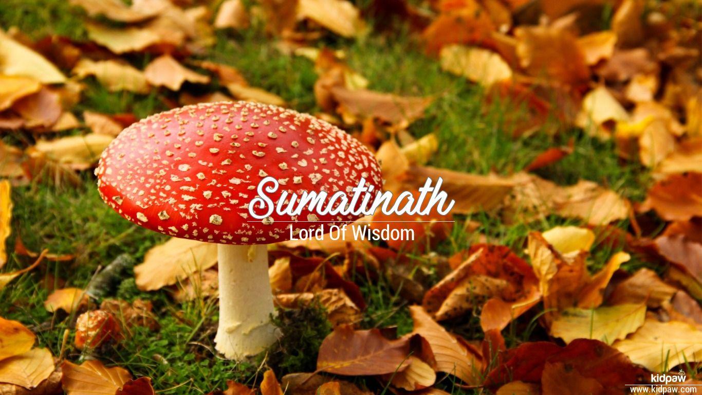 Sumatinath beautiful wallper