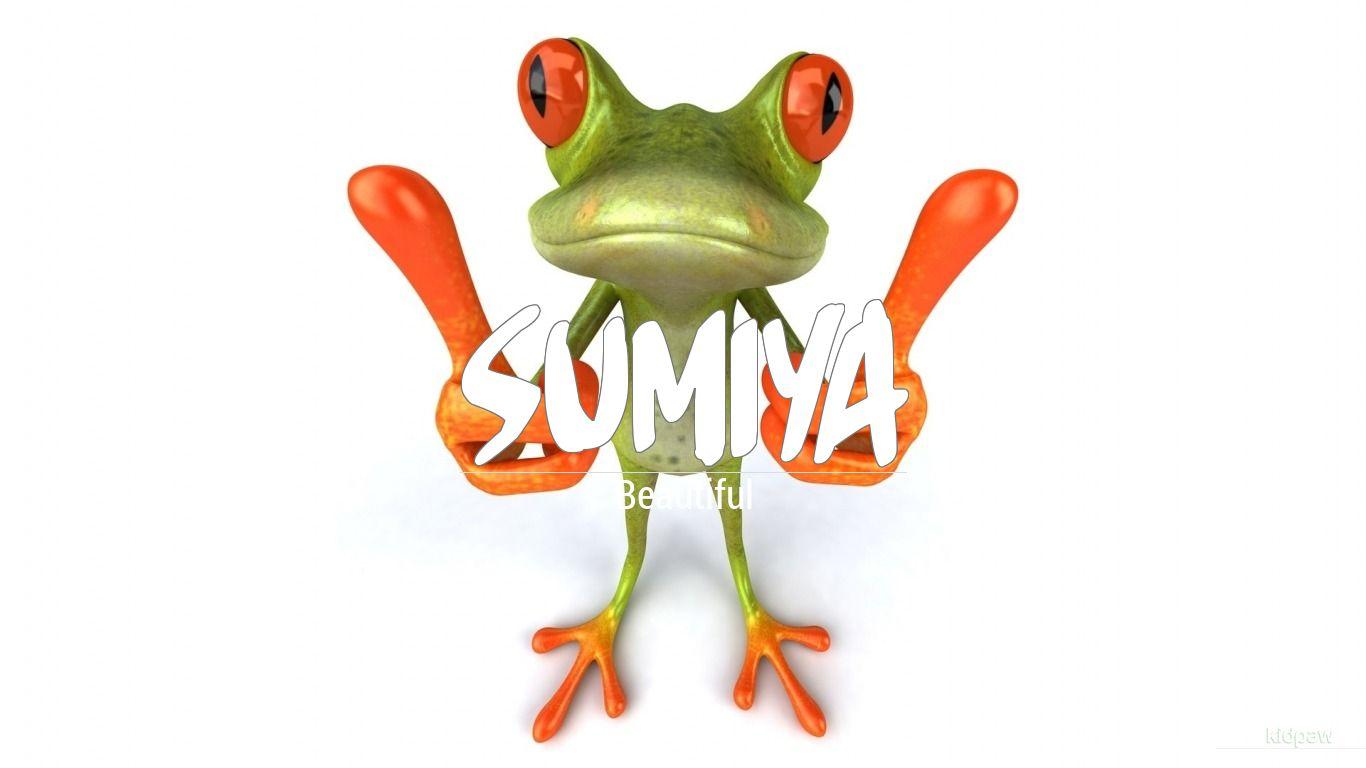 سمیہ | Sumiya Name Meaning in Urdu, Arabic names for Girls