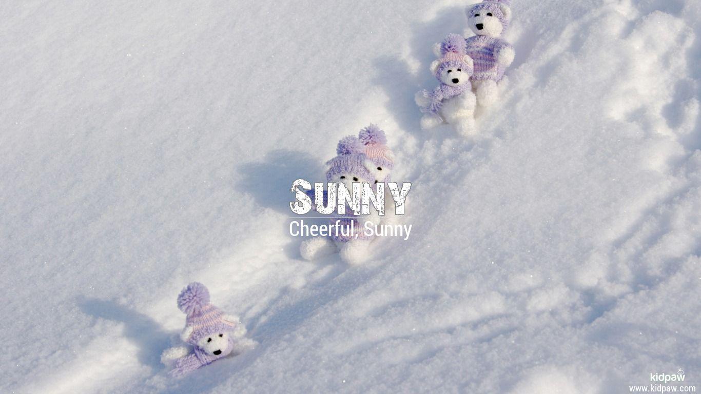 Sunny beautiful wallper
