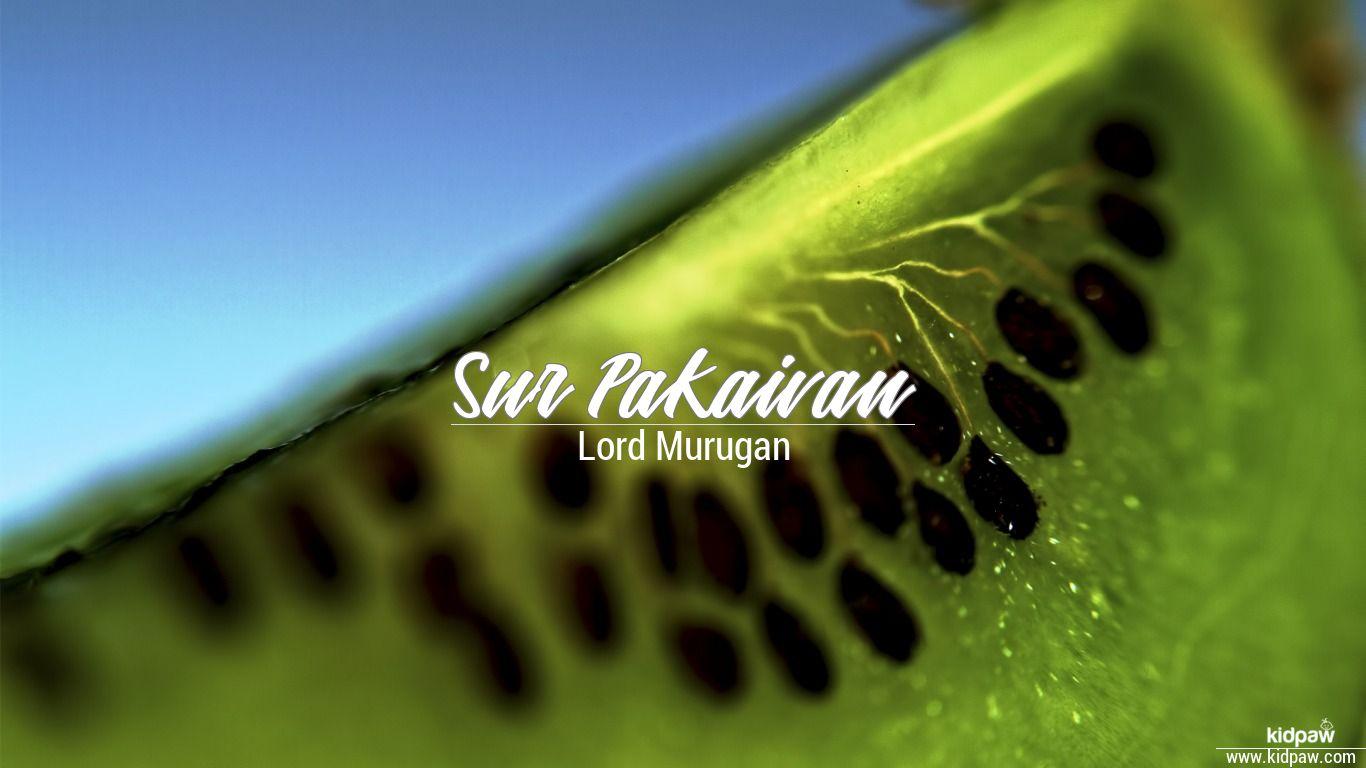 Sur Pakaivan beautiful wallper