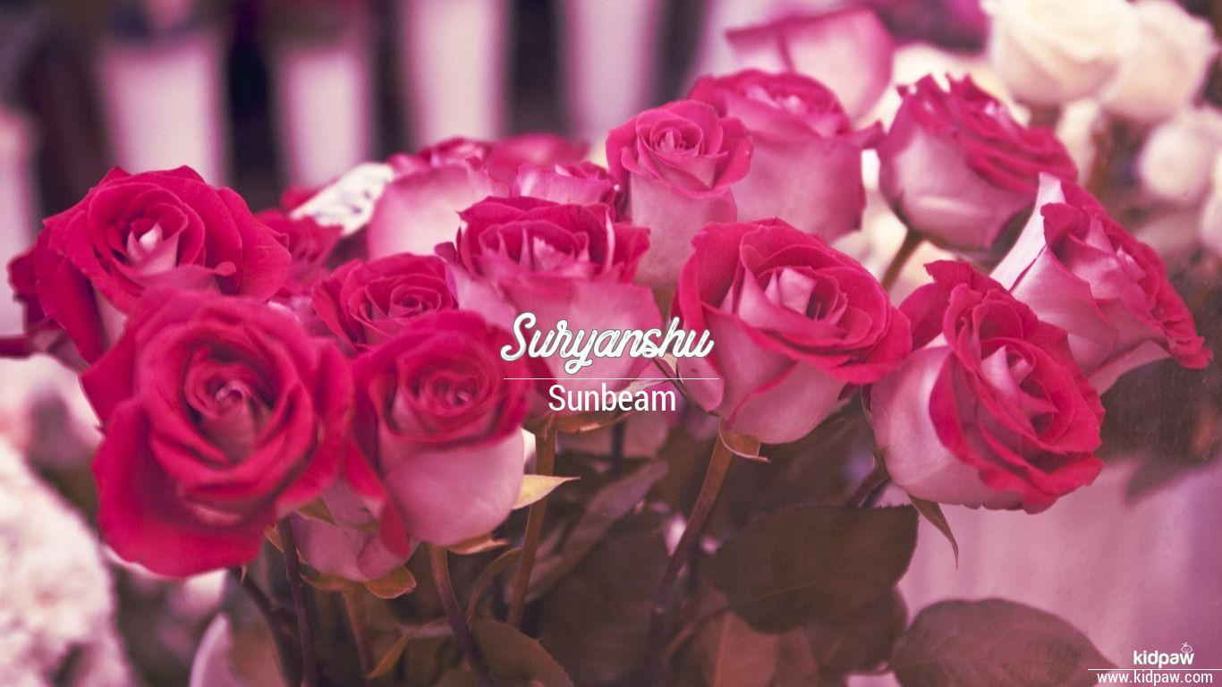 Suryanshu beautiful wallper