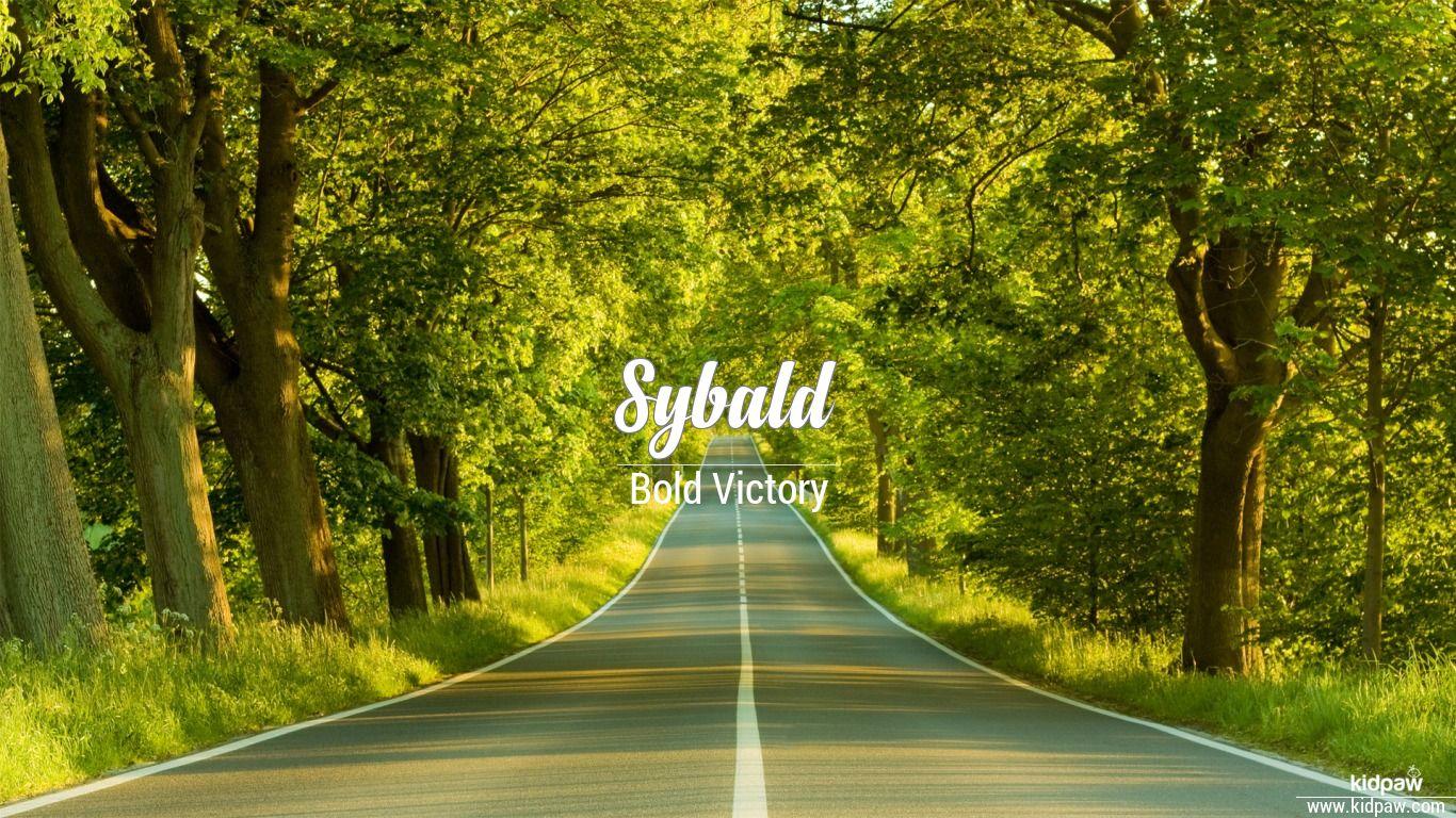 Sybald beautiful wallper