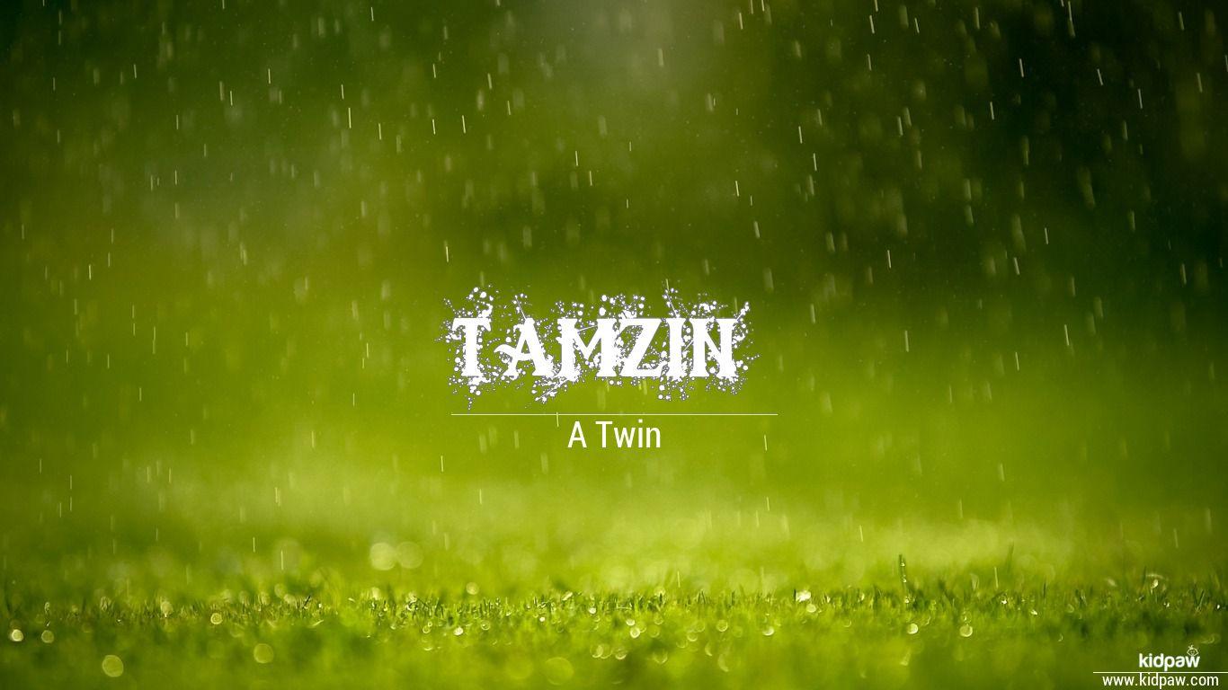 Tamzin beautiful wallper