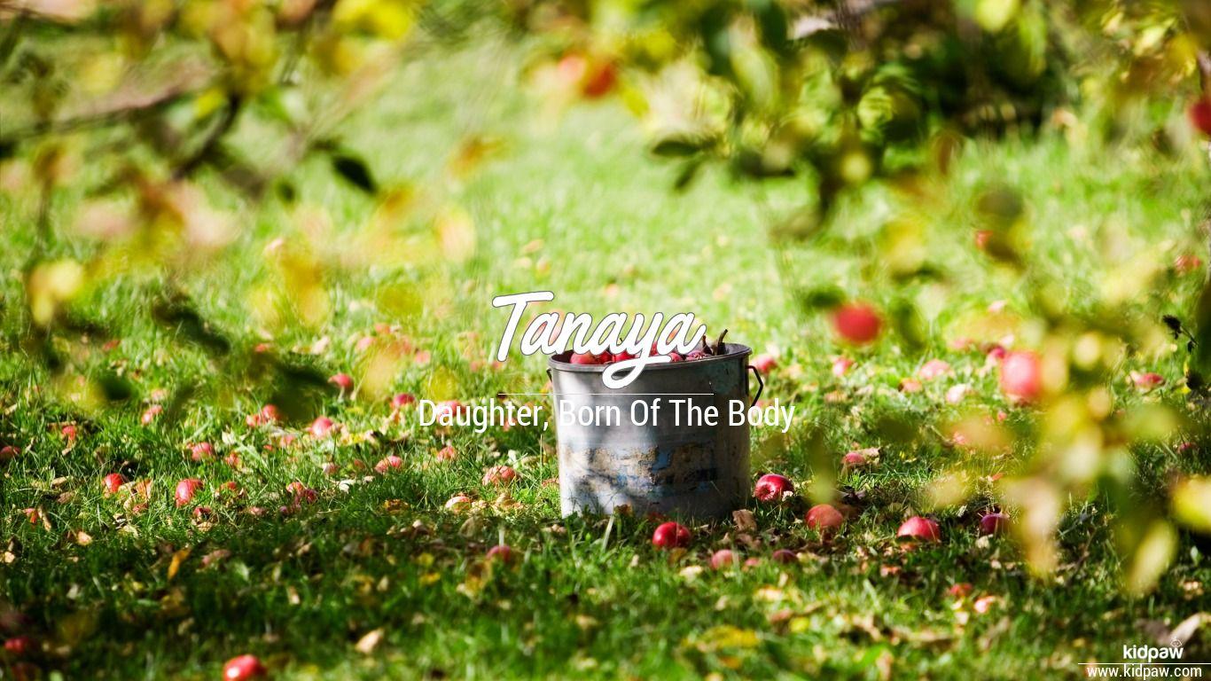 तानाया   Tanaya Name Meaning in Hindi, Latest Indian