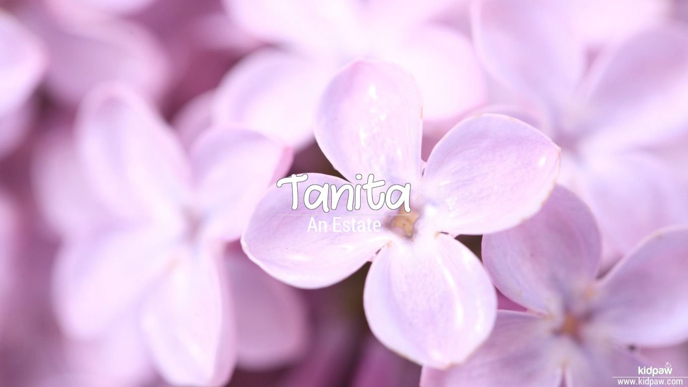 Tanita beautiful wallper