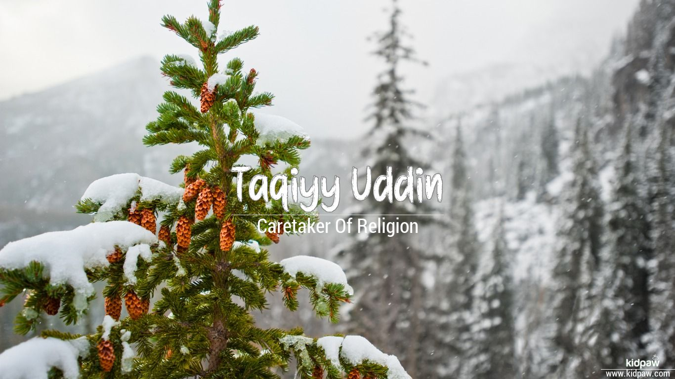Taqiyy uddin beautiful wallper