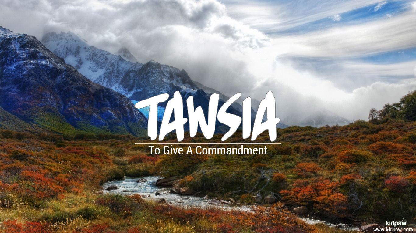 Tawsia beautiful wallper