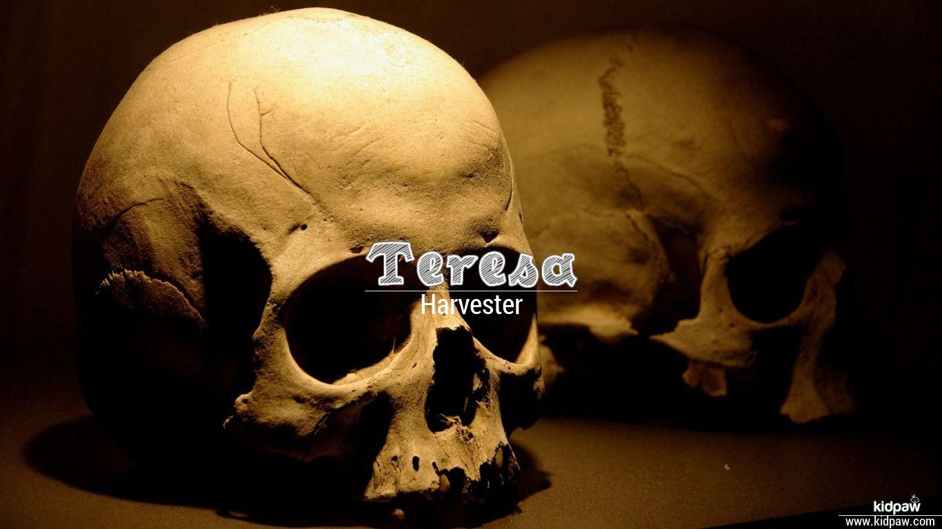 Christian Baby Girl Name Teresa Meanings, Religion, Origin