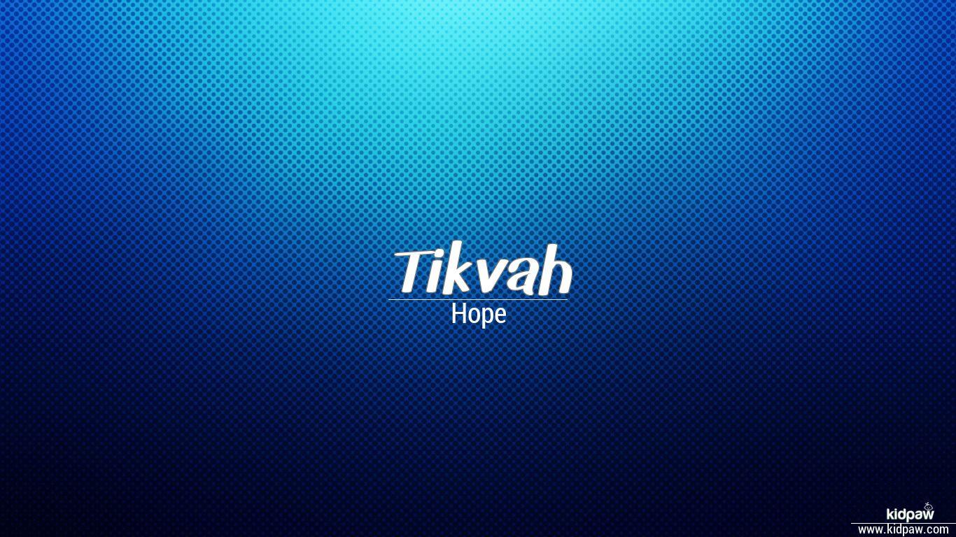 Tikvah beautiful wallper