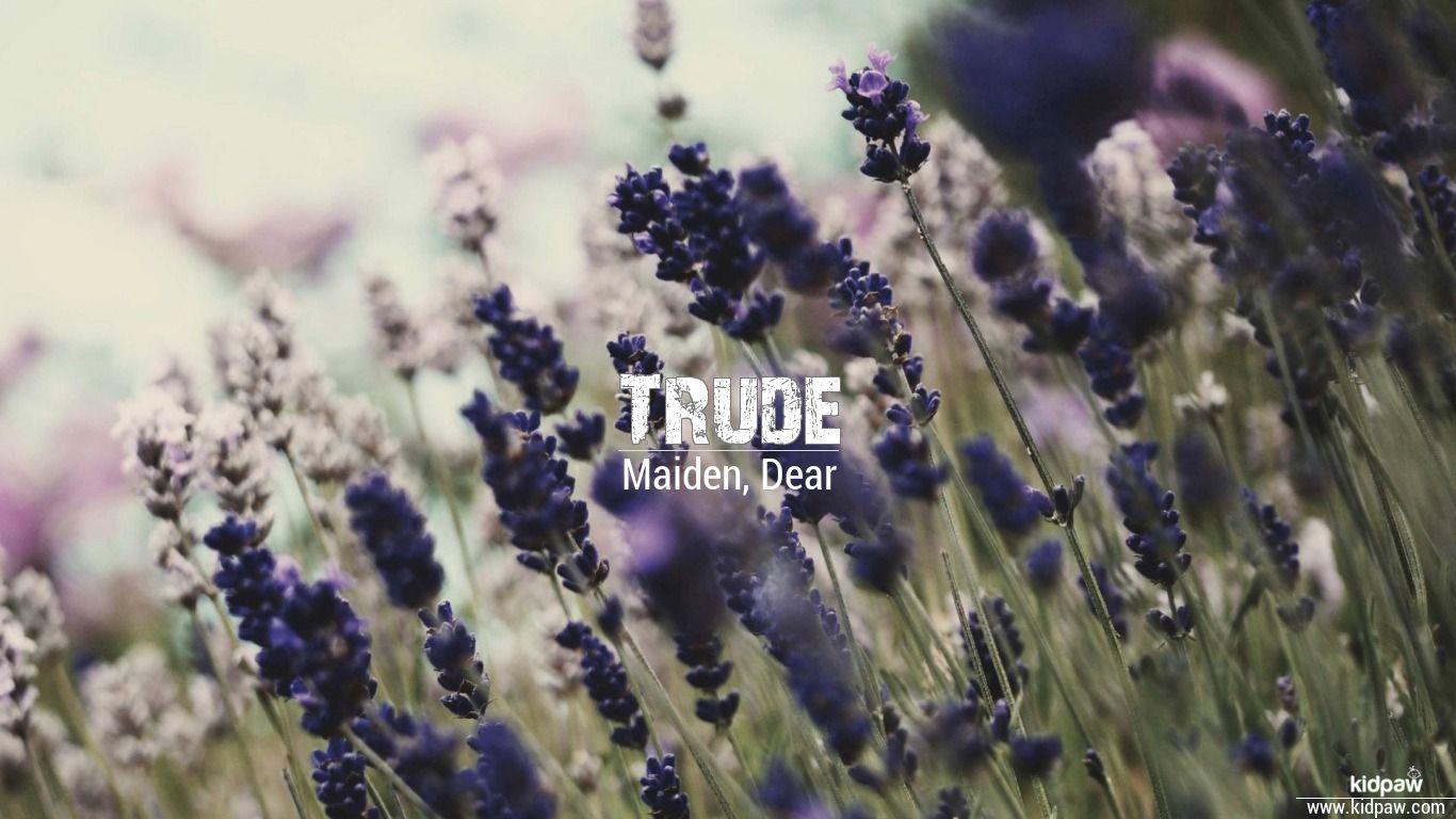 Trude beautiful wallper