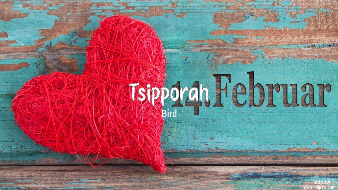Tsipporah beautiful wallper