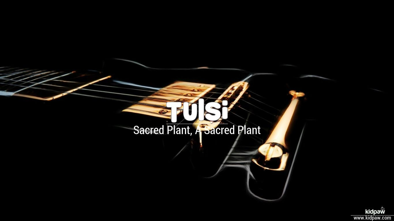 Tulsi Plant Hd Wallpaper: Tulsi Name Meaning In Hindi, Latest Indian Baby