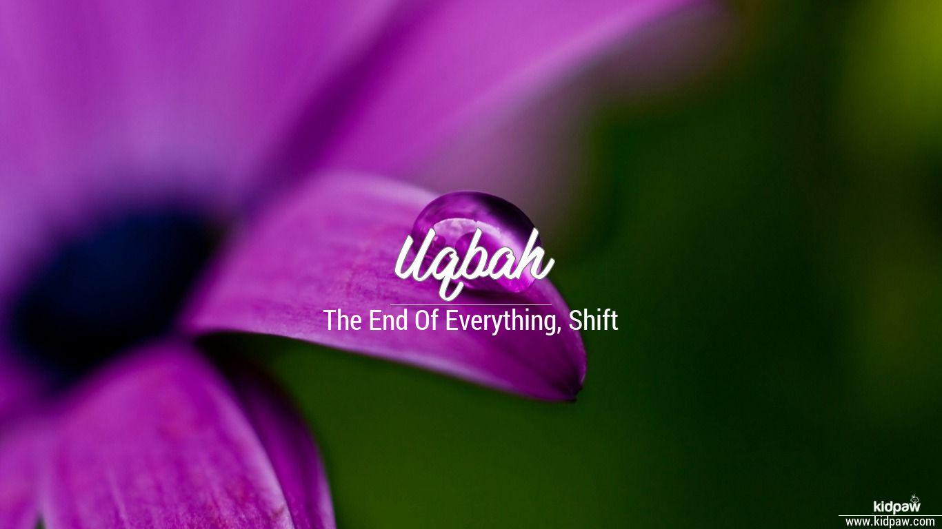 Uqbah beautiful wallper