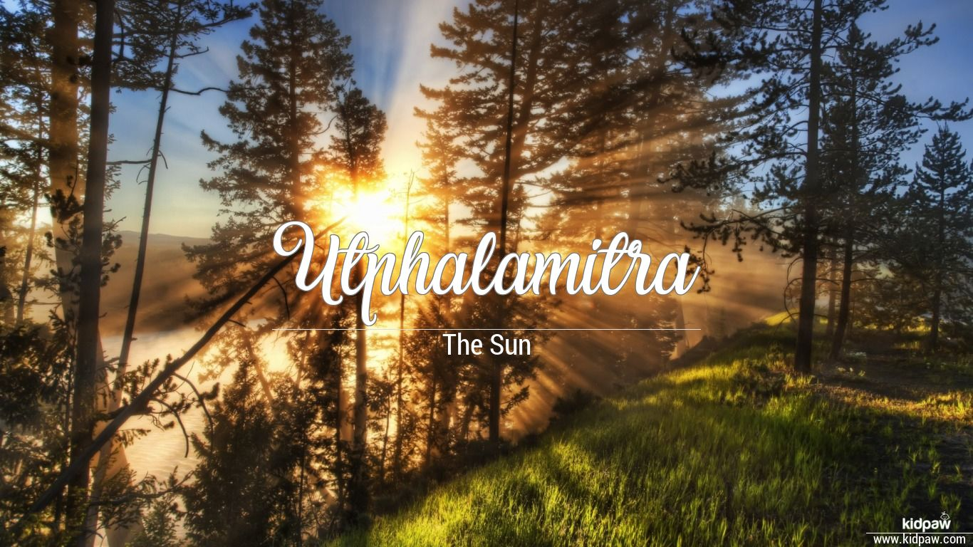 Utphalamitra beautiful wallper