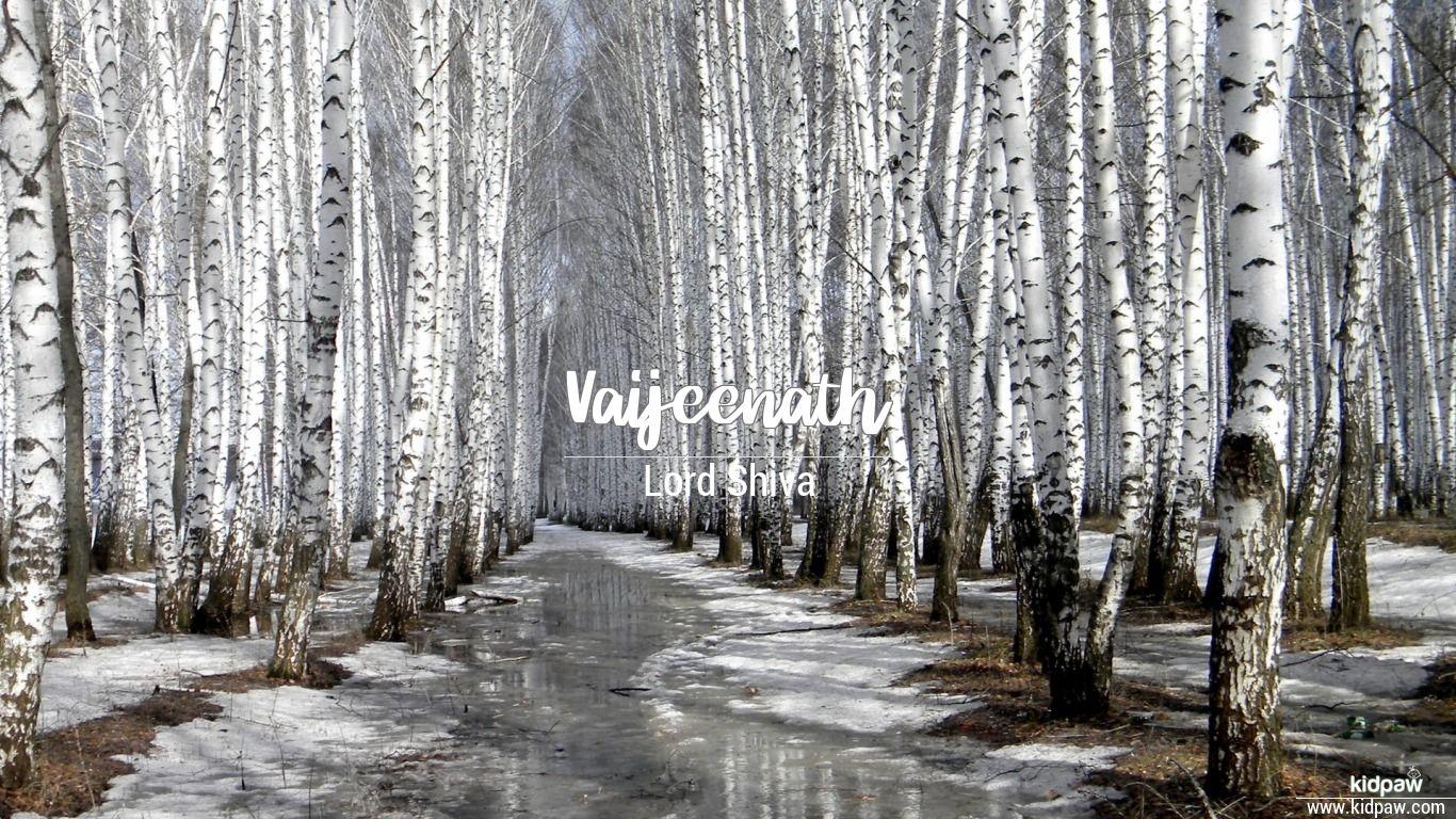 Vaijeenath beautiful wallper
