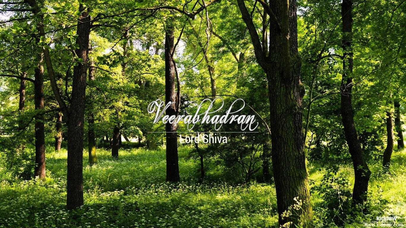 Veerabhadran beautiful wallper