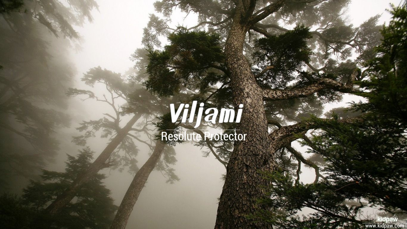 Viljami beautiful wallper