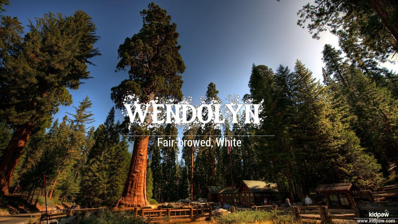 Wendolyn beautiful wallper
