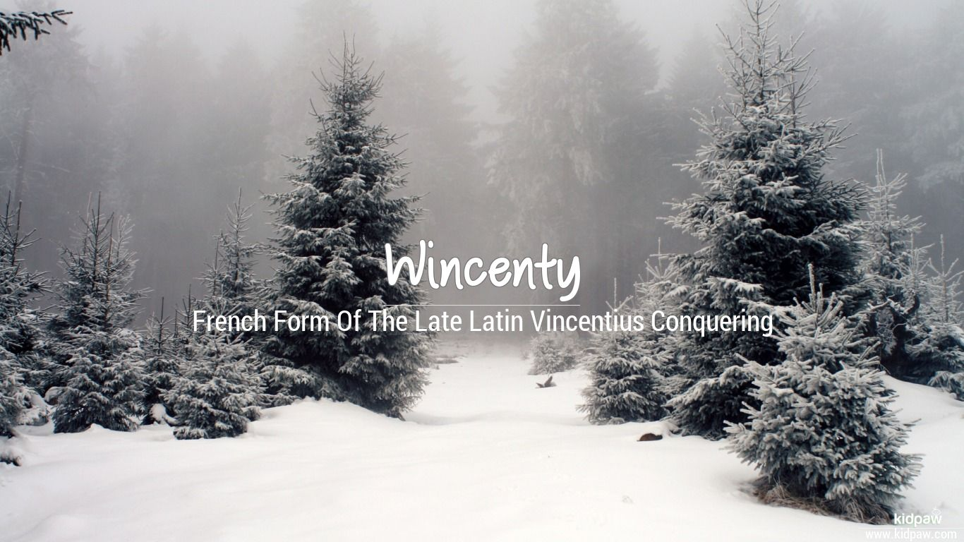 Wincenty beautiful wallper