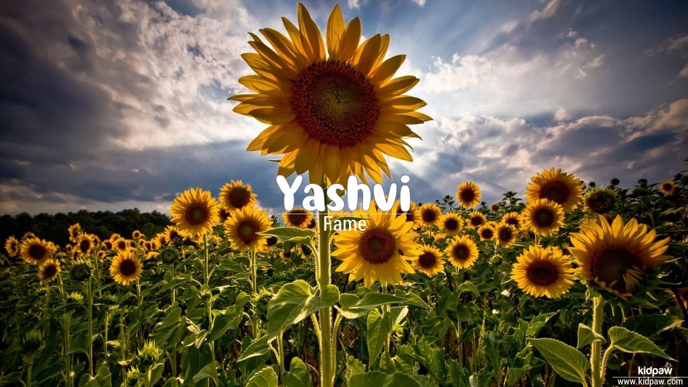 Yashvi beautiful wallper