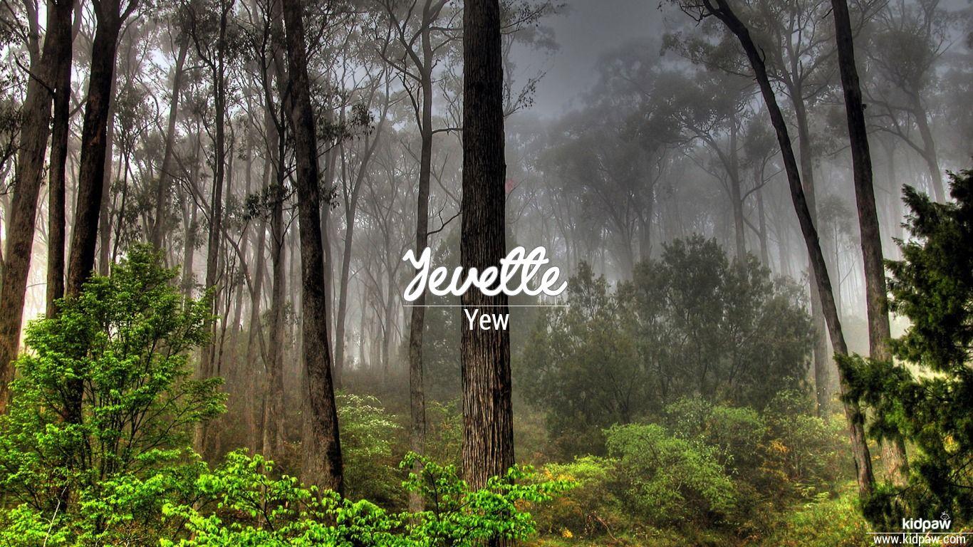 Yevette beautiful wallper