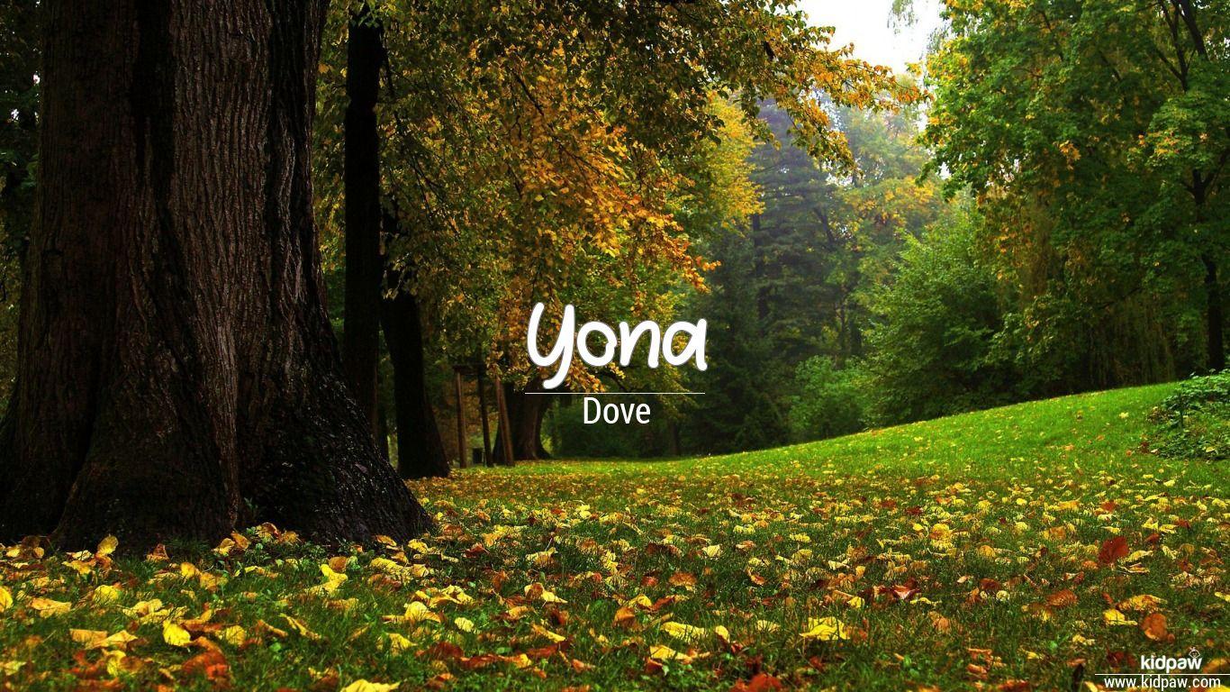 Yona beautiful wallper