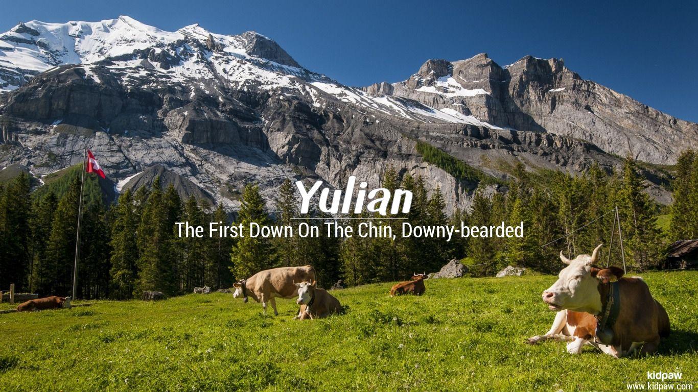 Yulian beautiful wallper