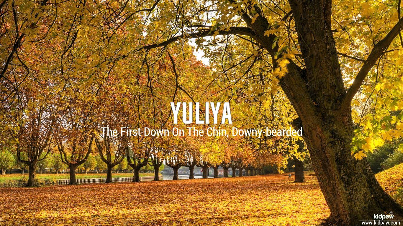 Yuliya beautiful wallper