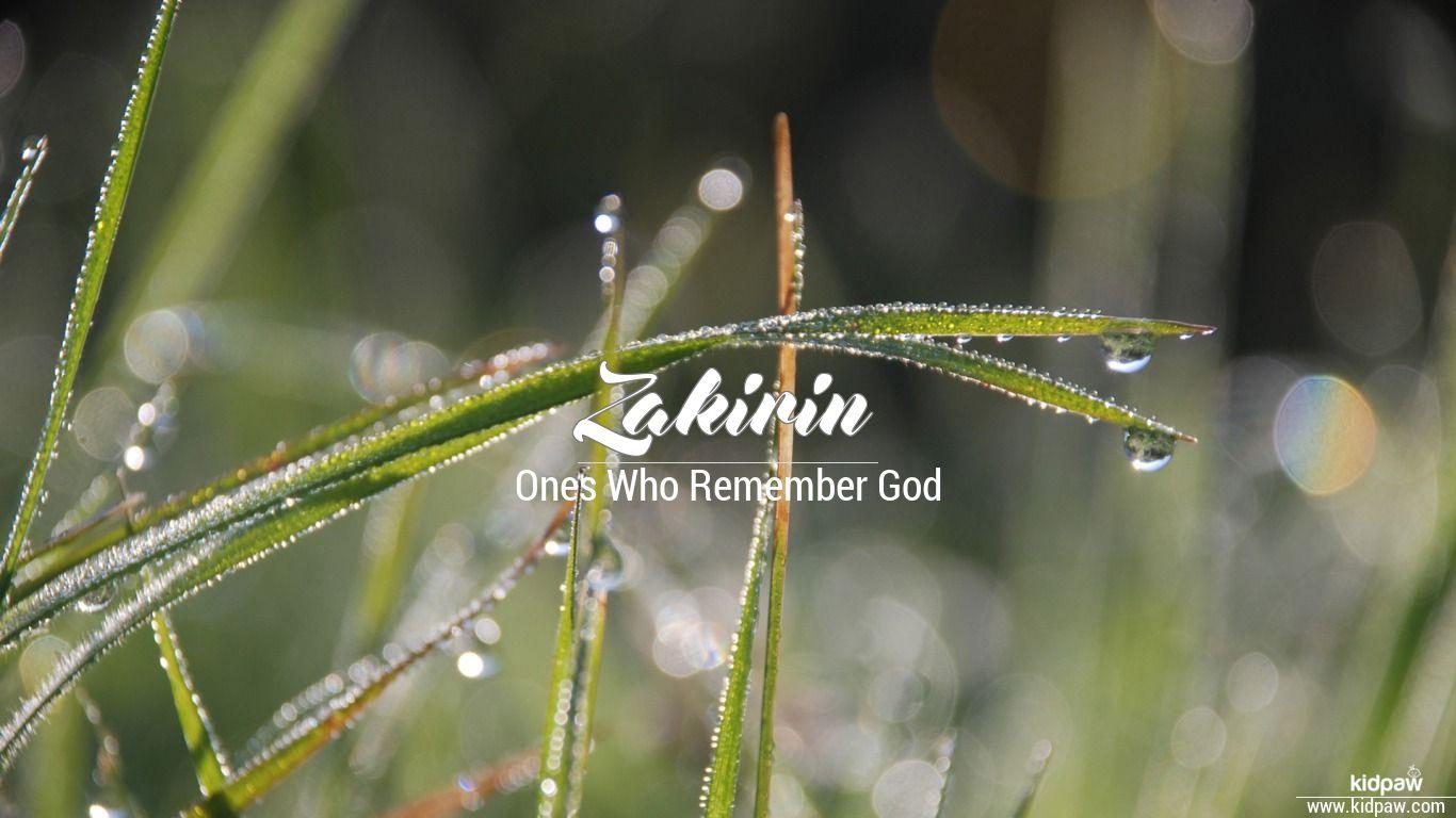 Zakirin beautiful wallper