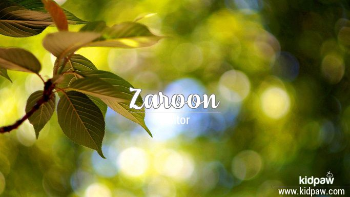 زارون | Zaroon Name Meaning in Urdu, Arabic names for Boys