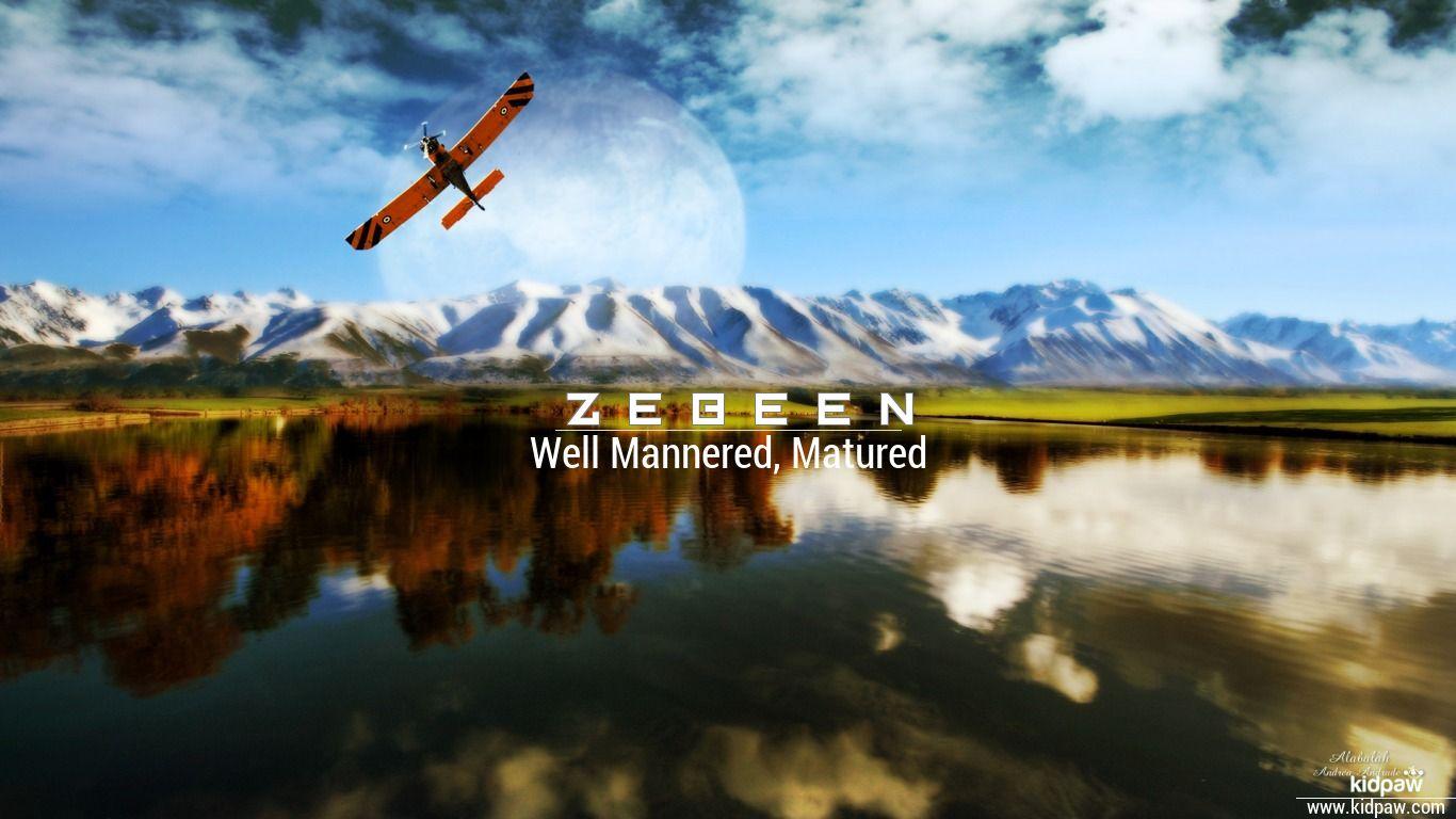 Zebeen beautiful wallper
