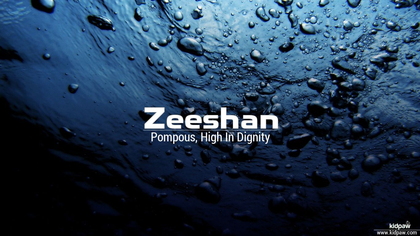 زیشان   Zeeshan Name Meaning in Urdu, Arabic names for Boys