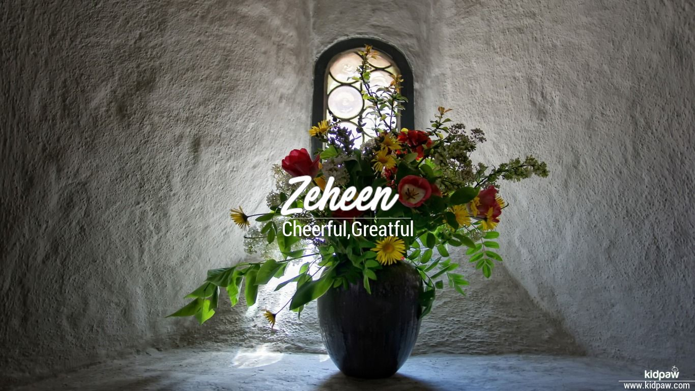 Zeheen beautiful wallper