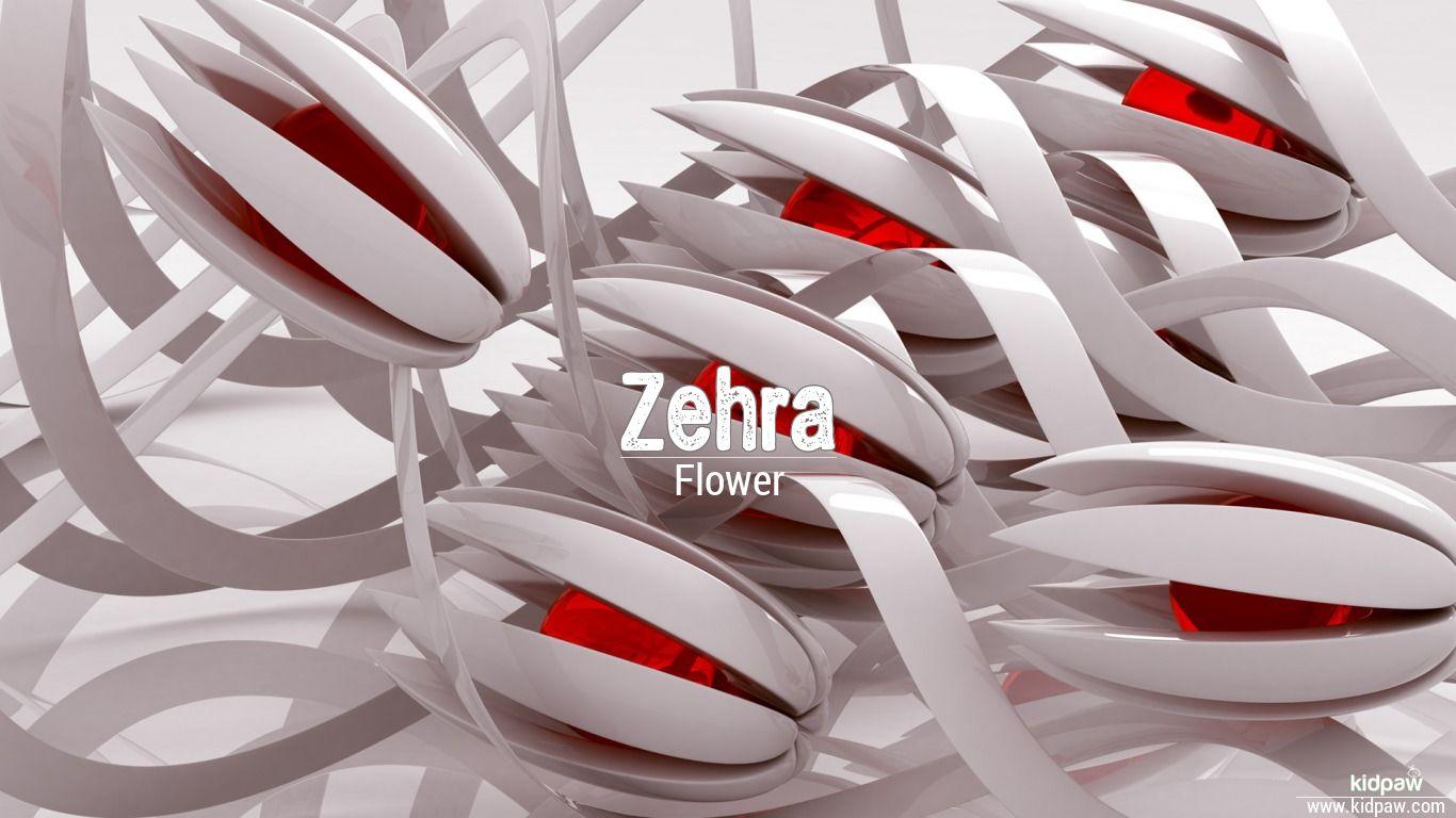 زہرہ Zehra Name Meaning In Urdu Arabic Names For Girls