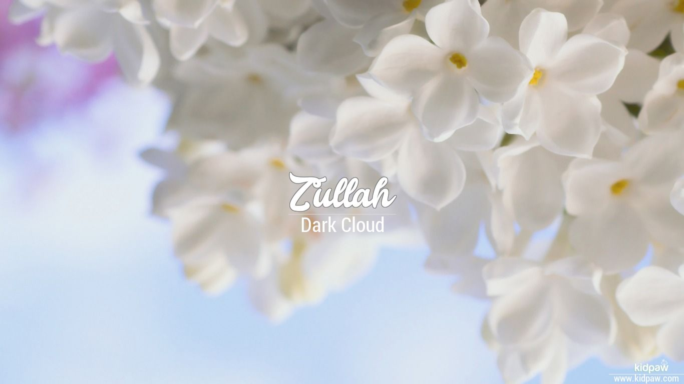 Zullah beautiful wallper
